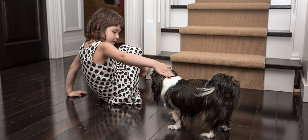 9 Important Hardwood Flooring Tips for Pet Owners